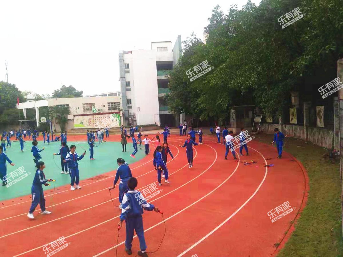 广州市番禺区华师附中番禺小学