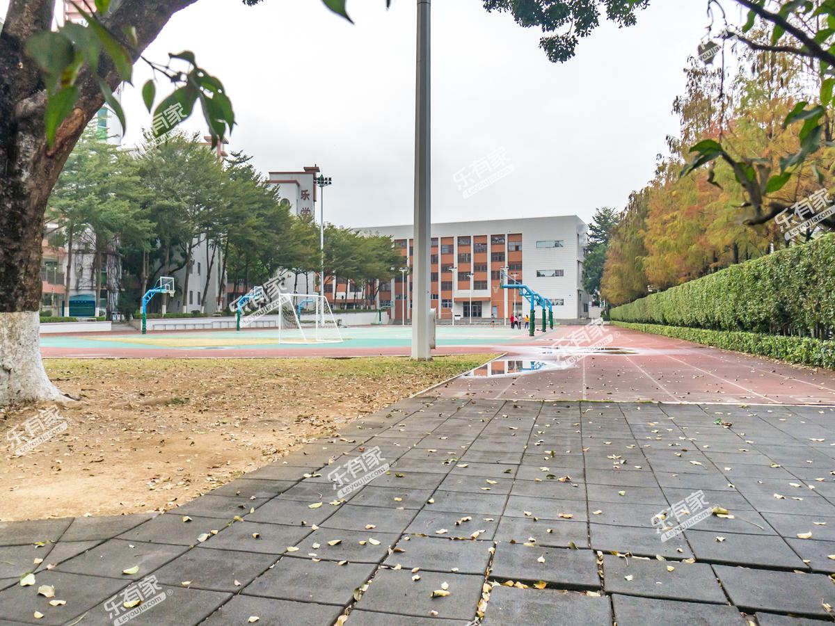 凤岗中心小学