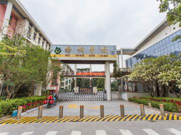 深圳市龙岗区梧桐学校(小学部)