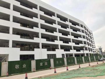 华南实验学校