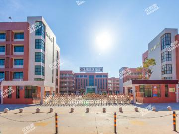 惠阳半岛学校